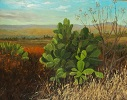 'Nopal Cactus'  Oil on panel, 18 X 24 inches, by Judith Anderson